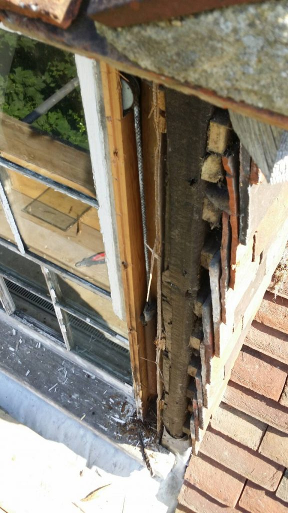 repair or replace my sash windows